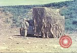 Image of 6th Tank Battalion Okinawa Ryukyu Islands, 1945, second 10 stock footage video 65675063823