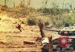 Image of 1st Tank Battalion Peleliu Palau Islands, 1944, second 6 stock footage video 65675063844
