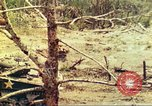 Image of 1st Tank Battalion Peleliu Palau Islands, 1944, second 11 stock footage video 65675063844