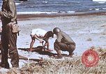 Image of Allied invasion troops Philippines, 1945, second 2 stock footage video 65675063911