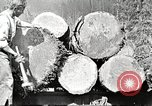 Image of lumber industry United States USA, 1922, second 9 stock footage video 65675063925