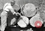 Image of lumber industry United States USA, 1922, second 11 stock footage video 65675063925