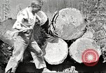 Image of lumber industry United States USA, 1922, second 12 stock footage video 65675063925