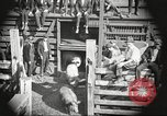 Image of workers in butchery United States USA, 1919, second 2 stock footage video 65675063934