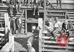 Image of workers in butchery United States USA, 1919, second 3 stock footage video 65675063934