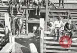 Image of workers in butchery United States USA, 1919, second 4 stock footage video 65675063934