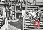 Image of workers in butchery United States USA, 1919, second 5 stock footage video 65675063934