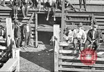 Image of workers in butchery United States USA, 1919, second 6 stock footage video 65675063934