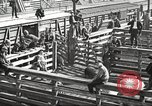 Image of workers in butchery United States USA, 1919, second 11 stock footage video 65675063934