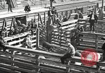 Image of workers in butchery United States USA, 1919, second 12 stock footage video 65675063934