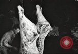 Image of workers in butchery United States USA, 1919, second 3 stock footage video 65675063935