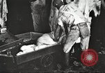 Image of workers in butchery United States USA, 1919, second 8 stock footage video 65675063935