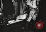 Image of workers in butchery United States USA, 1919, second 11 stock footage video 65675063935