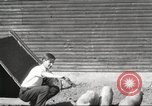 Image of workers in barn United States USA, 1920, second 8 stock footage video 65675063942