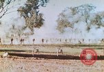 Image of 1st US Marine Division Australia, 1943, second 5 stock footage video 65675064081