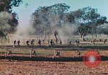 Image of 1st US Marine Division Australia, 1943, second 9 stock footage video 65675064081
