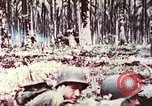 Image of 5th Marine Regiment Russell islands Solomon Islands, 1944, second 10 stock footage video 65675064090