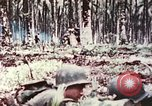 Image of 5th Marine Regiment Russell islands Solomon Islands, 1944, second 11 stock footage video 65675064090