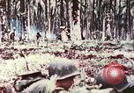 Image of 5th Marine Regiment Russell islands Solomon Islands, 1944, second 12 stock footage video 65675064090