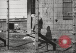 Image of Red Cross officials Germany, 1945, second 12 stock footage video 65675064116