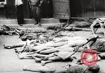 Image of dead bodies Germany, 1945, second 1 stock footage video 65675064121