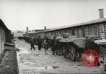 Image of dead bodies Germany, 1945, second 5 stock footage video 65675064122