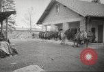 Image of Dachau Concentration Camp Germany, 1945, second 1 stock footage video 65675064127