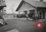 Image of Dachau Concentration Camp Germany, 1945, second 3 stock footage video 65675064127