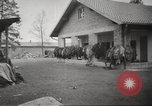 Image of Dachau Concentration Camp Germany, 1945, second 4 stock footage video 65675064127