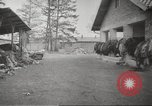Image of Dachau Concentration Camp Germany, 1945, second 8 stock footage video 65675064127