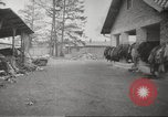 Image of Dachau Concentration Camp Germany, 1945, second 10 stock footage video 65675064127