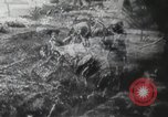 Image of American civilians Arkansas United States USA, 1942, second 10 stock footage video 65675064132