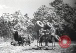 Image of air raid drill Arkansas United States USA, 1942, second 3 stock footage video 65675064134