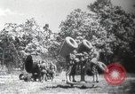 Image of air raid drill Arkansas United States USA, 1942, second 5 stock footage video 65675064134