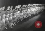 Image of Rockettes New York City USA, 1937, second 10 stock footage video 65675064294