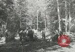 Image of Civilian Conservation Corps United States USA, 1939, second 11 stock footage video 65675064310