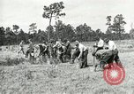 Image of Civilian Conservation Corps United States USA, 1939, second 8 stock footage video 65675064311