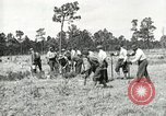 Image of Civilian Conservation Corps United States USA, 1939, second 11 stock footage video 65675064311