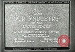 Image of fur industry United States USA, 1930, second 10 stock footage video 65675064354