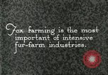 Image of fur industry United States USA, 1930, second 2 stock footage video 65675064358