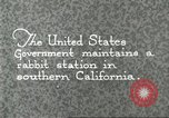 Image of fur industry Southern California USA, 1930, second 2 stock footage video 65675064362