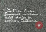 Image of fur industry Southern California USA, 1930, second 7 stock footage video 65675064362
