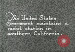 Image of fur industry Southern California USA, 1930, second 10 stock footage video 65675064362
