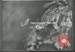 Image of fur industry Ohio United States USA, 1930, second 5 stock footage video 65675064363