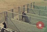 Image of Marijuana detection dogs San Diego California USA, 1975, second 5 stock footage video 65675064377