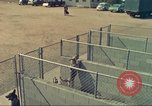 Image of Marijuana detection dogs San Diego California USA, 1975, second 6 stock footage video 65675064377