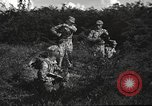 Image of United States Marine Corps training United States USA, 1958, second 3 stock footage video 65675064401