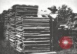 Image of lumber industry United States USA, 1920, second 11 stock footage video 65675064427