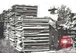 Image of lumber industry United States USA, 1920, second 12 stock footage video 65675064427
