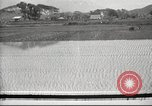 Image of Japanese farmers Japan, 1920, second 1 stock footage video 65675064490